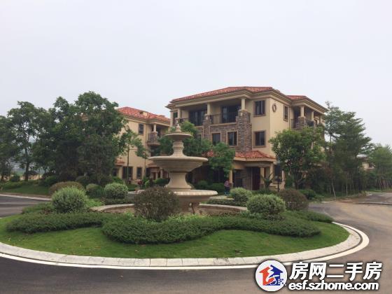 东江新城,佳兆业开发超级大盘,联排别墅仅160万一套