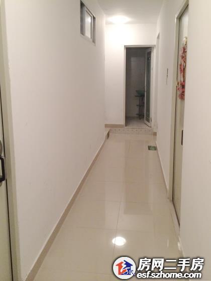 南山蛇口 单身公寓独立洗手间 免费wifi 业主直租