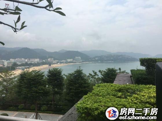 中国醉美八大海岸线之一,世界第九富豪区 背靠青山 面朝大海