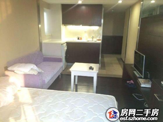 酒店公寓带豪华装修出租